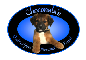 Logo Choconala's MR
