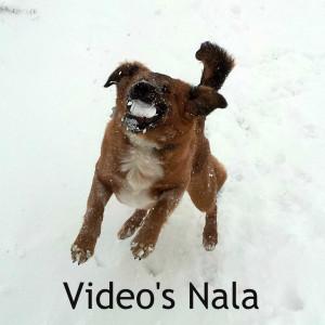Video's Nala
